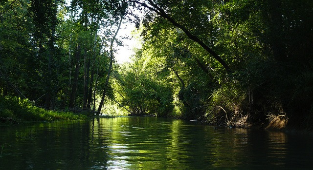 Okla. awaits Illinois River pollution guidelines