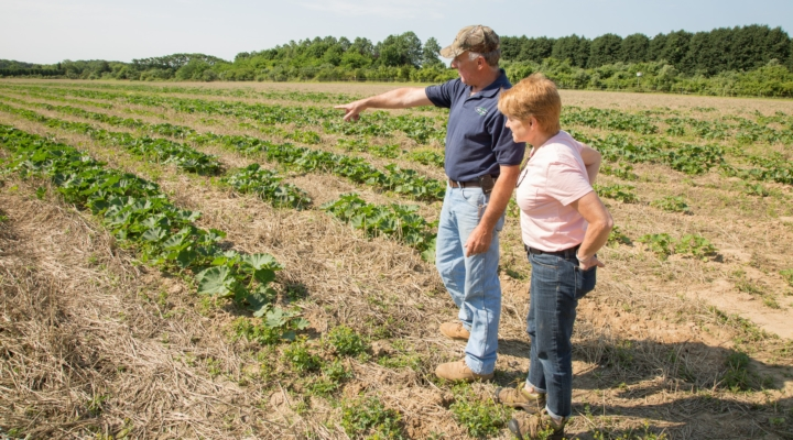 Become a practical soil health specialist