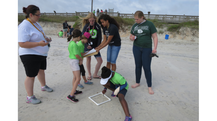 UF/IFAS works to ensure clean shorelines