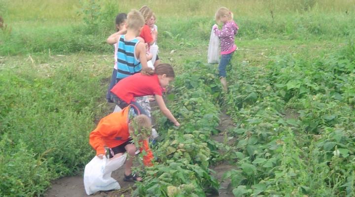Chuck Fleming Memorial School Garden Grants   Morning Ag Clips