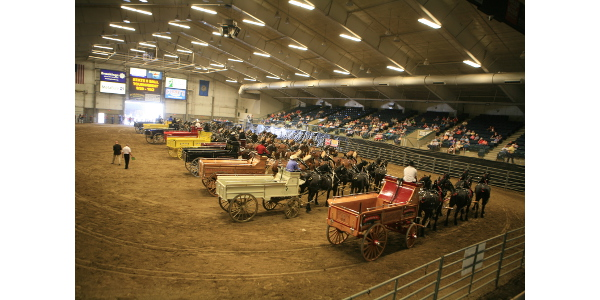 14 six horse hitches in the show ring