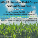 """Michigan State University Extension specialists and educators who work with field crops have been hosting a series of """"Field Crops Virtual Breakfast"""" meetings Thursday mornings during the 2018 growing season. (Courtesy of MSU Extension)"""