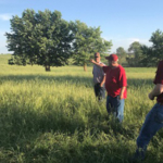 The next session in this year's Greenhorn Grazing series at the Iowa State University McNay Research Farm is set for June 14, and organizer Joe Sellers said people who want to attend are encouraged to register soon for an accurate meal count. (Courtesy of ISU Extension and Outreach)