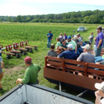 The 2018 Corn and Soybean Weed Management Tour will highlight ongoing research that addresses these challenges and introduces new ideas for crop producers and Ag Professionals on Tuesday, July 3.(Courtesy of University of Minnesota Extension)