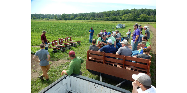 Corn and soybean weed management tour July 3