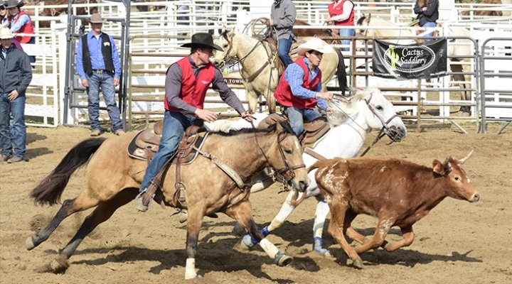 Rodeo club advances 5 qualifiers to nationals
