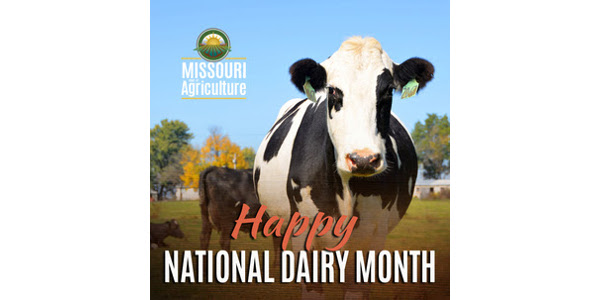 Dairy Month starts with dairy scholarships