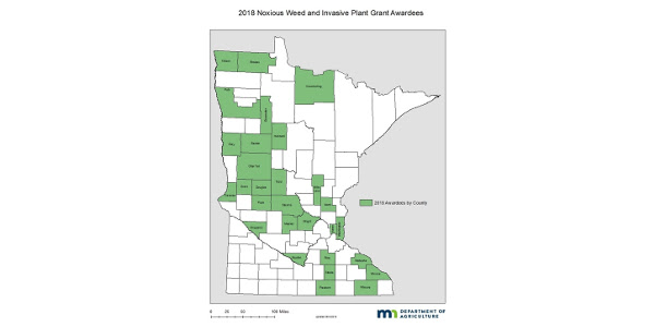 The Minnesota Department of Agriculture (MDA) is awarding a new grant program aimed at combatting noxious weeds around the state. (Courtesy of MDA)