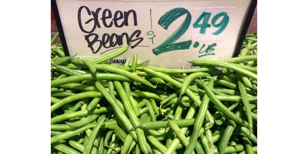 Oh, snap! Colorado green beans are here