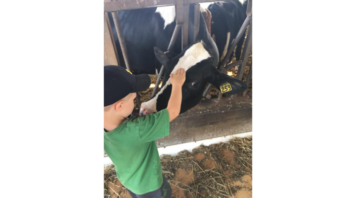 Open Farm Day in Madison County
