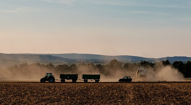 German farmers expect poor harvest amid drought