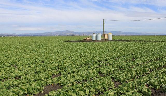 3 vacancies on fertilizer advisory board