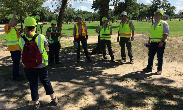 Urban Forest Strike Team surveys Houston trees