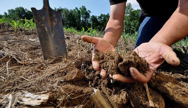 Soil Compaction Field Day