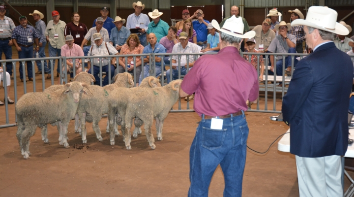 45th Annual Sheep and Goat Field Day, Aug. 17-18