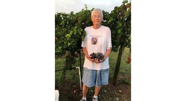 Significant women in Okla. ag: Jill Stichler