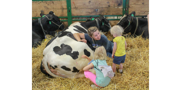 Great Dairy Adventure a huge success