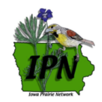 The Iowa Prairie Network invites the public to join their Annual Meeting at Whiterock Conservancy, Diversity Farms, and other prairies in the Coon Rapids and Dedham area. (Courtesy of Iowa Prairie Network)