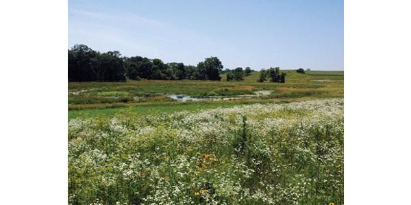 Managing farmland drainage workshops