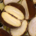 Chestnuts split to reveal healthy meat. (Photo by Erin Lizotte, MSU Extension)