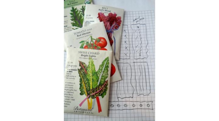 Fall vegetable gardens