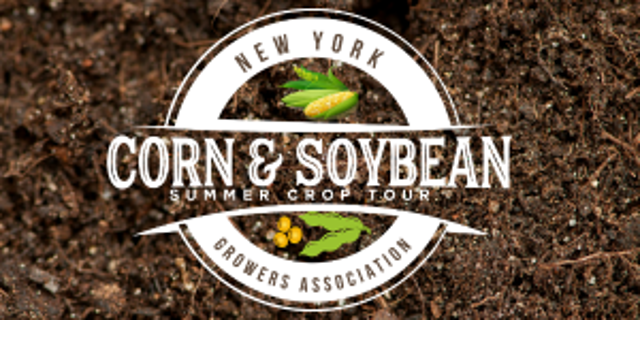 NY Corn & Soybean Summer Crop Tour