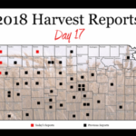 This is day 17 and the final day of the 2018 Kansas Wheat Harvest Reports, brought to you by the Kansas Wheat Commission, Kansas Association of Wheat Growers and the Kansas Grain and Feed Association. (Courtesy of Kansas Wheat)