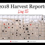 This is day 15 of the Kansas Wheat Harvest Reports, brought to you by the Kansas Wheat Commission, Kansas Association of Wheat Growers and the Kansas Grain and Feed Association. (Courtesy of Kansas Wheat)