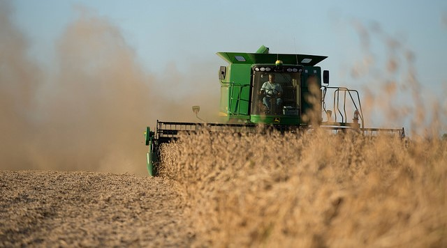 Free soybean webinar: Turning data into action