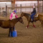 NCTA equine students work with their horses at the indoor arena. (Craig Chandler / NCTA photo)