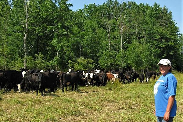 Conservation Easement Farm Tour set for Aug. 25