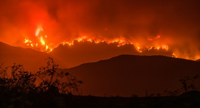 Complex of fires now largest in Calif. history