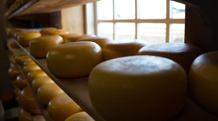 California cheeses win national honor