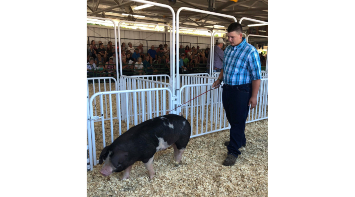15 year old raises over $10,000 for girl fighting neuroblastoma by selling his 4-H hog