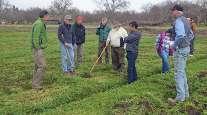 Researchers, farmers to build soil as nature intended