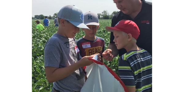 Youth examines insects at NTCA. (Courtesy of NCTA)