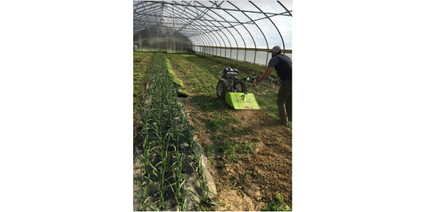 Maximizing high tunnel production field day
