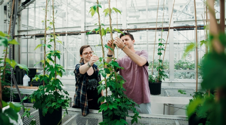 'Cornell AgriTech' reflects influence in ag innovation