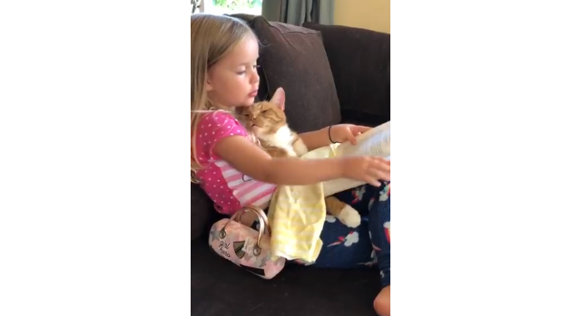 Watching this little girl read to a sleepy cat is the video to soothe your soul