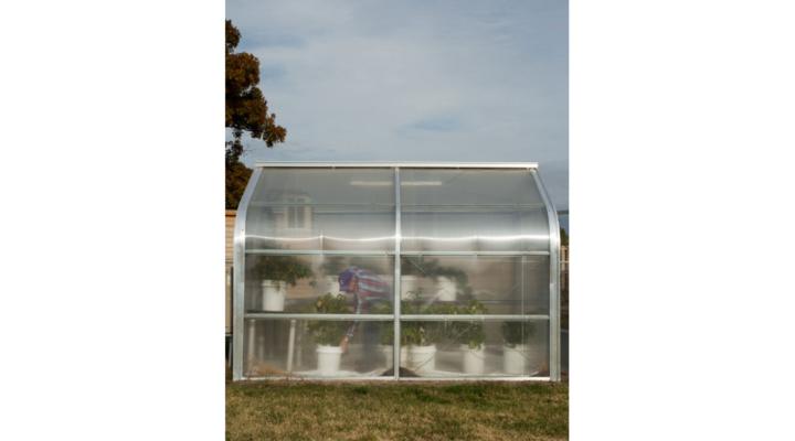 Upcoming Backyard Farming Workshop