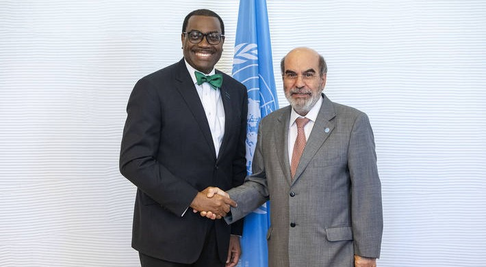 ADB, FAO target agriculture investments in Africa