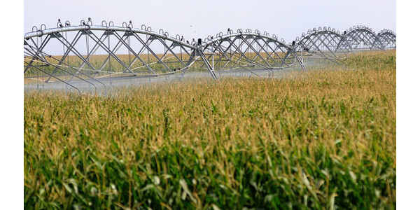 Water Technology Field Day Aug. 15