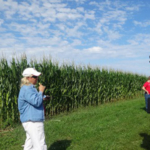 Iowa State University Extension and Outreach's Organic Ag Program will discuss best methods for transitioning into organic corn and soybean production during a field day at the Neely-Kinyon Memorial Research and Demonstration Farm Field Day, Aug. 21. (Courtesy of ISU Extension and Outreach)