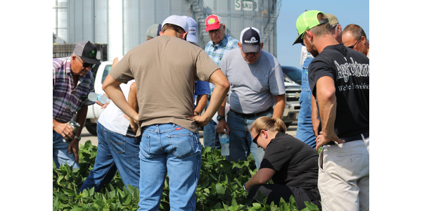 University of Missouri Extension plant pathologist Kaitlyn Bissonnette shows soybean farmers how to scout for disease during a recent scouting school. (Photo by Linda Geist)