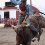An evening of PRCA Rodeo, as well as many other equine events, will be the featured attractions at the Outdoor Arena during the 2018 Clay County Fair, Sept. 8-16. (Courtesy of Clay County Fair & Events Center)