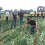 Attend this day-long bus trip and tour and get a close look at unique cover cropping techniques, custom interseeding and manure equipment and soil health strategies of farmers in the Lower Fox Demonstration Farms Network. (Courtesy of UW Discovery Farms)