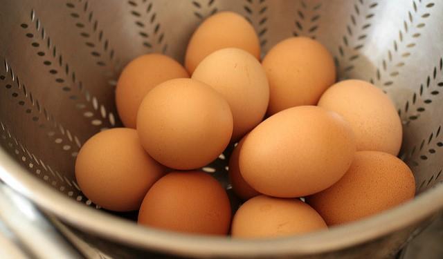 U.S. egg industry advances trade