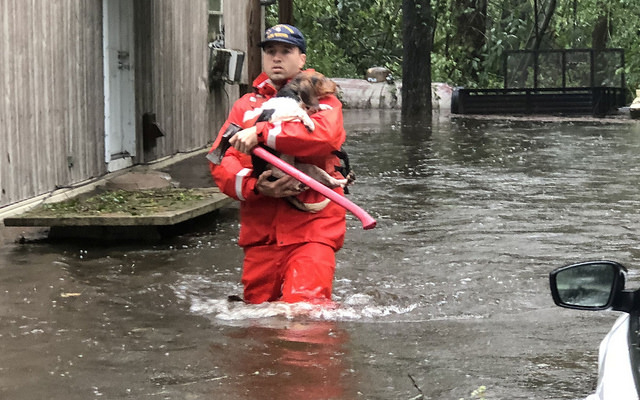 State, local agencies respond to Florence