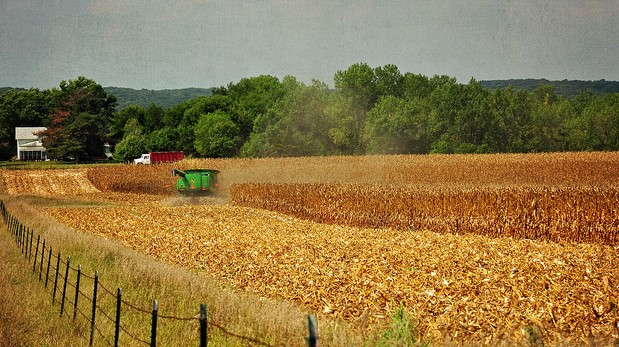 Corn Belt weather outlook