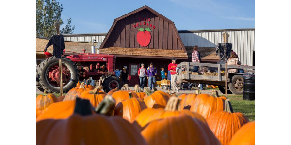 Deal's Orchard is a fourth-generation apple orchard near Jefferson operated by Chris and Tracy Deal, Benji Deal, and Jerald and Cindy Deal. (Courtesy of Practical Farmers of Iowa)